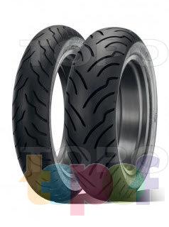 Шины Dunlop American Elite. Изображение модели #1