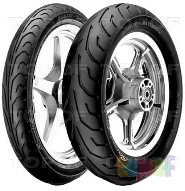 Шины Dunlop Arrowmax GT502