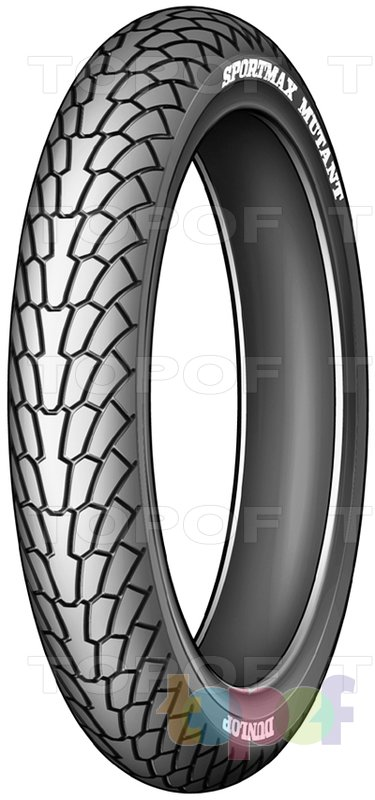 Шины Dunlop Sportmax Mutant. Передняя