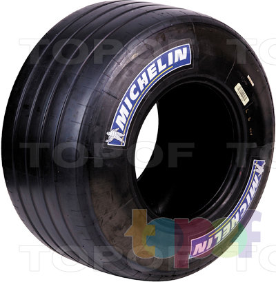 Шины Michelin F1. Изображение модели #1
