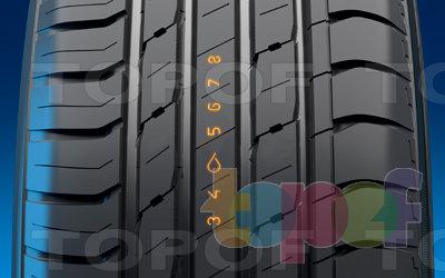 Шины Nokian Hakka Blue (SUV). Изображение модели #1