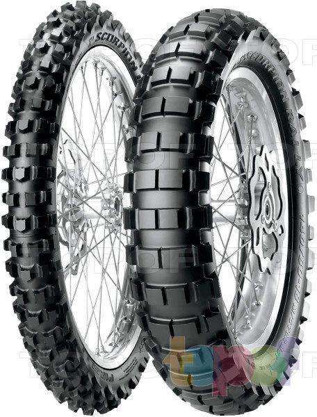 Шины Pirelli Scorpion Rally. Изображение модели #1