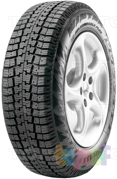 Шины Pirelli Winter Plus