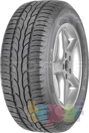 Шины Sava Intensa HP 205/55R16 91H FR