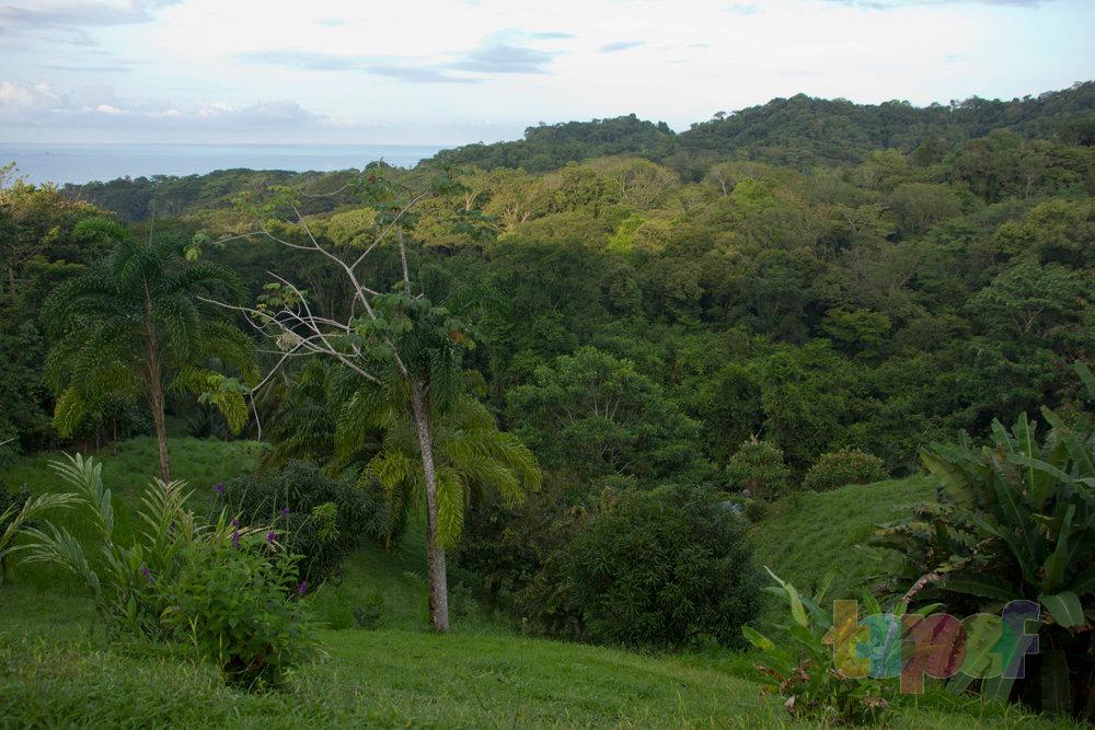 Тест драйв шин Кордиант All Terrain в Коста-Рике. Природа