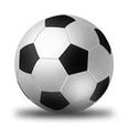 Linglong Tire станет международным партнером Бундеслиги и ФК Вольфсбург