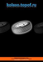 Страница с рекламой koleso.topof.ru из журнала Популярные шины