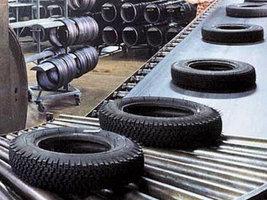 Допэмиссия акций «Омскшины» приостановлена по иску миноритария