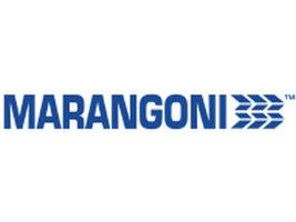 Marangoni анонсирует изменения в руководстве